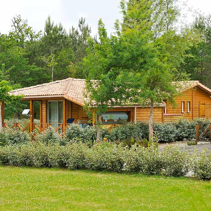 Cottage bois