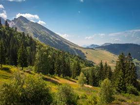 PRL Auvergne-Rhône-Alpes